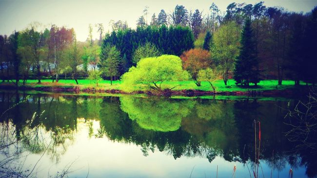 Lahn Water Reflections