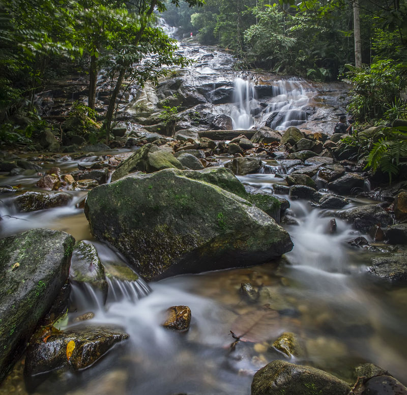 Waterfall Water Forest Flowing Stream Waterfall Scenics Motion Beauty In Nature Rock - Object Flowing Water Nature Environment Blurred Motion Non-urban Scene Tranquil Scene Tourism River Malaysia No People