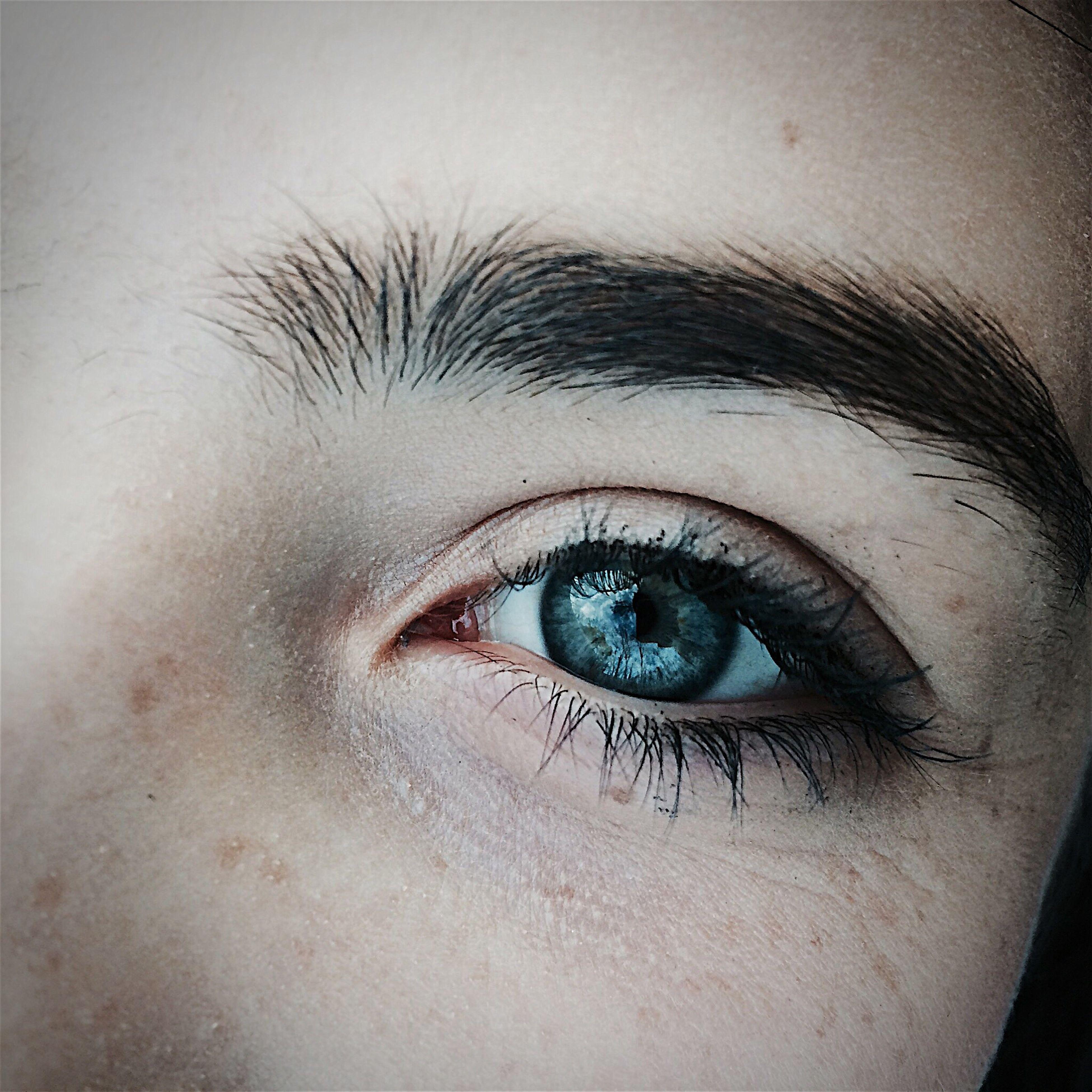 human eye, eyelash, close-up, human body part, eyebrow, eyesight, one person, human skin, eyeball, young adult, people, adult, day