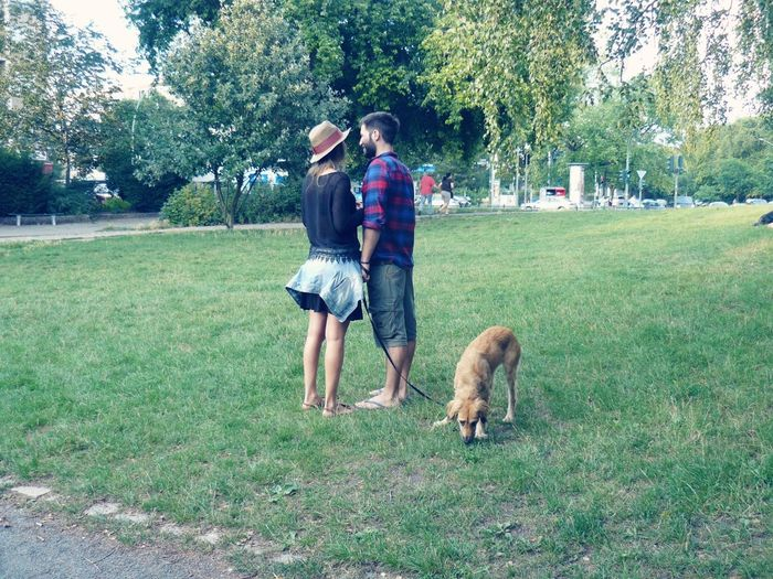 My Dog My Fiancée In The Park Summer In Berlin Sunny Day☀ Walking Together