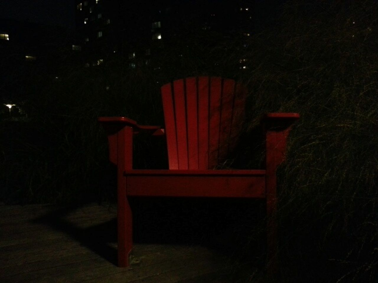chair, empty, no people, night, red, tree, seat, indoors, growth, nature