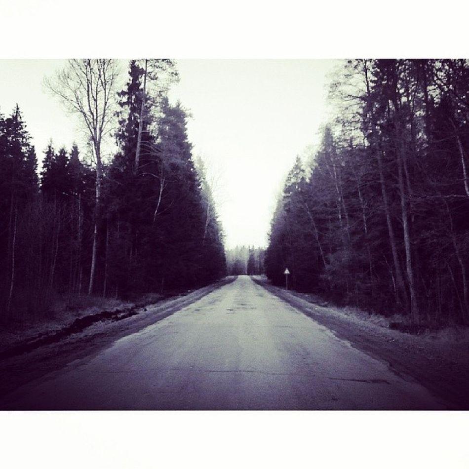 Latvia Razna Lovelatvia Road