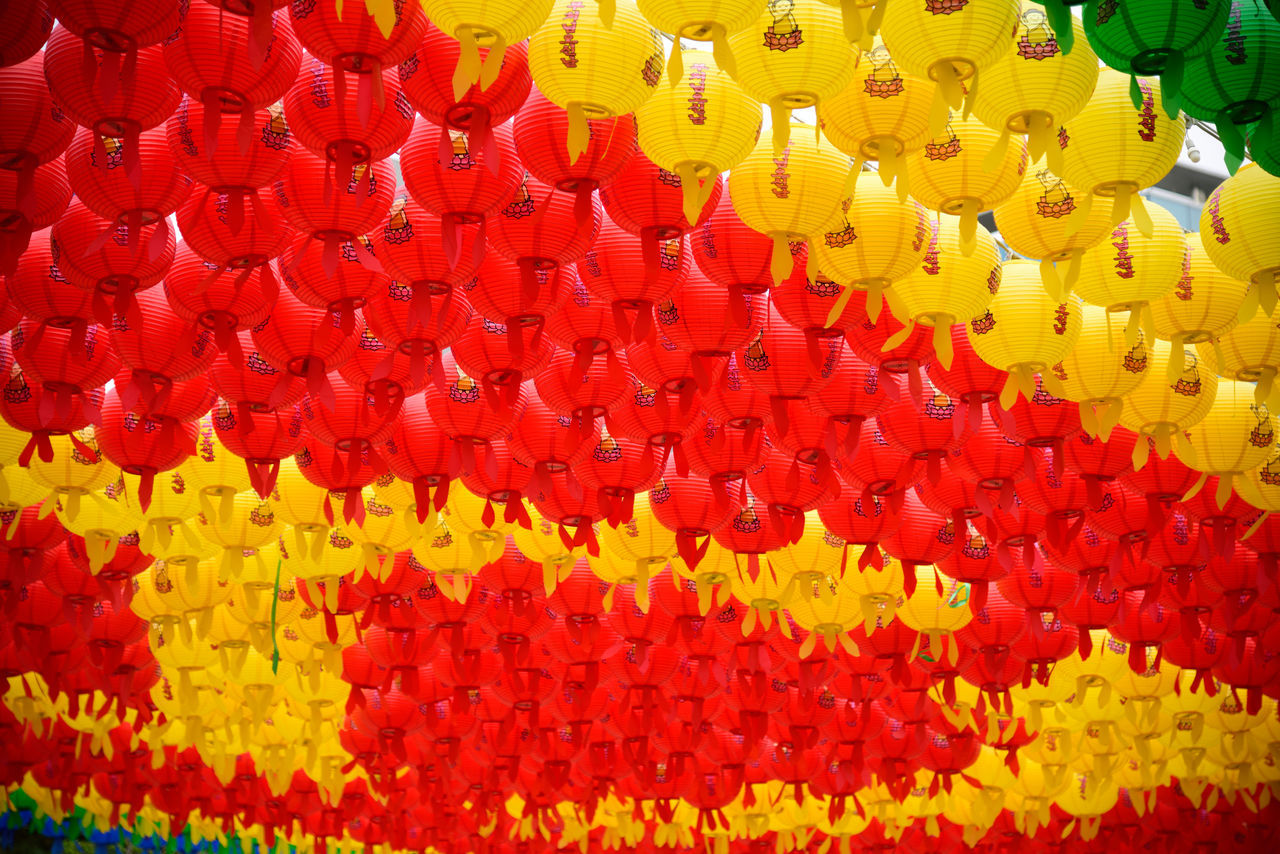 Buddha's Birthday Hanging Lotus Lantern Festival Seoul, Korea Wishes