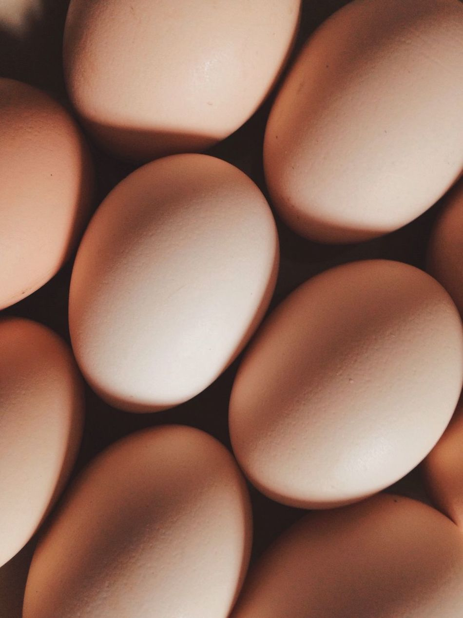 Beautiful stock photos of egg, Close-Up, Egg, Food, Food And Drink