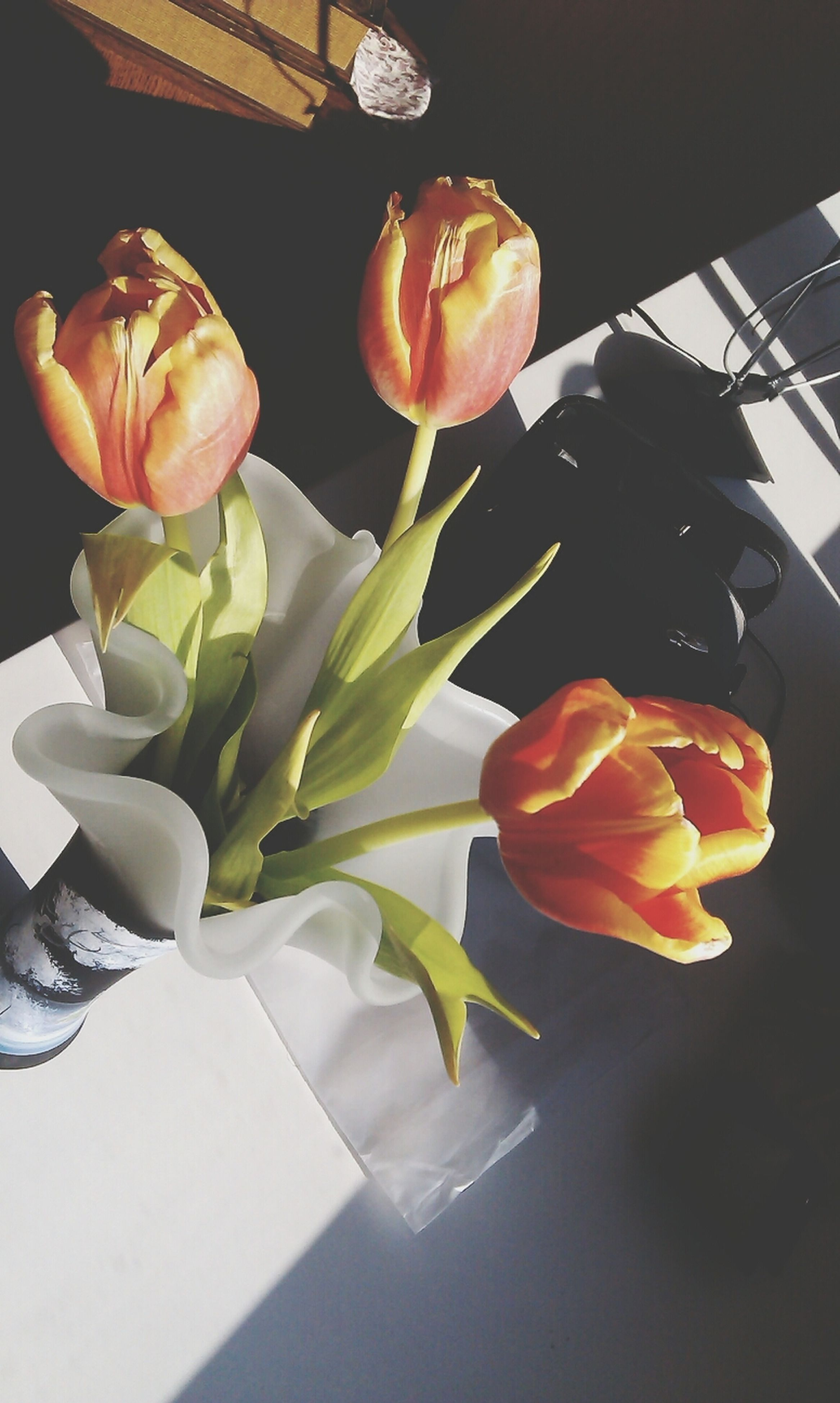 flower, petal, indoors, fragility, freshness, flower head, vase, close-up, rose - flower, plant, growth, table, red, nature, beauty in nature, leaf, stem, home interior, no people, decoration