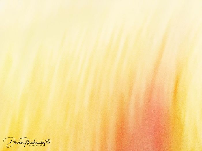 Fine Art Photography Yellow No People ShotOnIphone Art IPhoneography Artography Abstractart Postmodern  Astral Close-up Etheric Abstract Ethereal Inflames Vision Inspirations