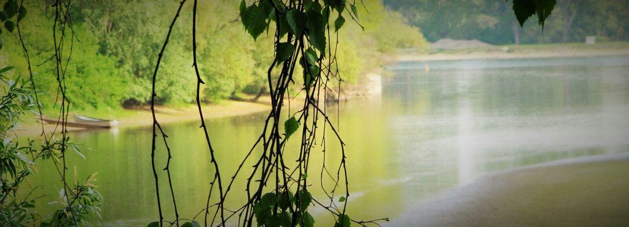 France Water Reflections Green Alsace Münchhausen The Great Outdoors - 2015 EyeEm Awards Delta De La Sauer Water