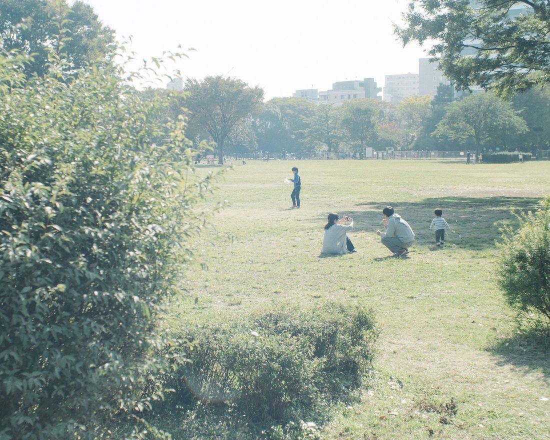 One Fine Day Leisure Activity Outdoors Day People Capture The Moment From My Point Of View At The Park Landscape Still Life Holiday Daytime Walking Around A Day Of Tokyo Urban Nature Grass Togetherness