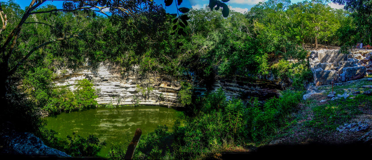 Archaeological Sites Beauty In Nature Cenote Cenote Sagrado Chichen Itza Forest Green Color Lush Foliage Mayan Mayan Ruins Mayan Wonders Nature Panaramic Sacred Sinkhole Solitude Tranquil Scene Tranquility Water Yucatan Mexico Yucatan Peninsula Yúcatan