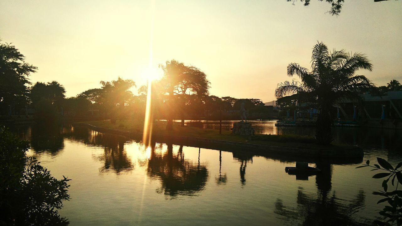 Luz Solar ambiente Parque Forestal Guayaquil