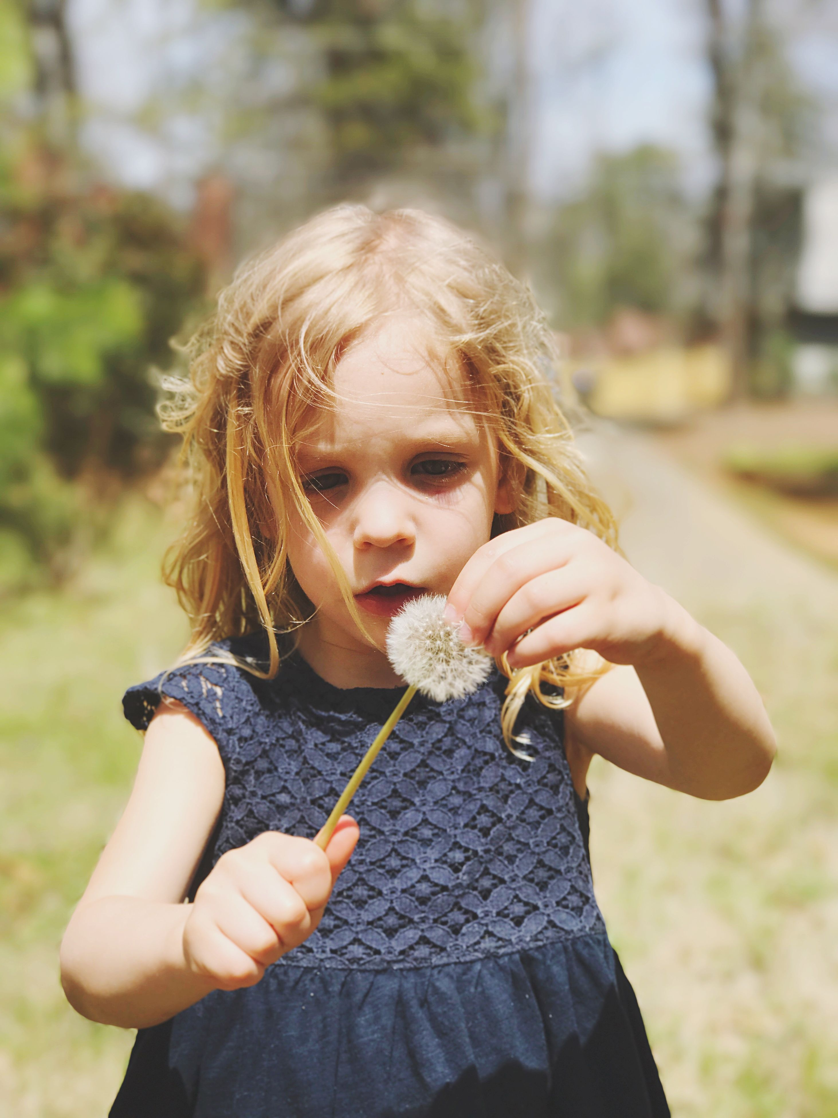 children only, child, one girl only, girls, childhood, holding, one person, waist up, outdoors, front view, blond hair, only girls, portrait, people, day, yard, nature, close-up
