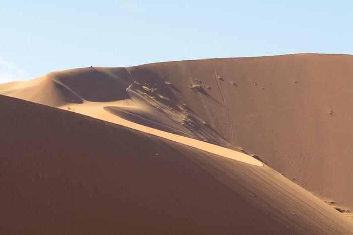 sand dunes of sossusvlei in namib naukluft national park, namibia Africa African Arid Desert Dune Dunes EyeEm Best Shots EyeEm Nature Lover Landscape Landscapes Namib Naukluft National Park Namibia Namibian Nature Naukluft Red Sand Sand Dune Sand Dunes Scenery Sossusvlei Sossusvlei Desert South Africa Travel Traveling
