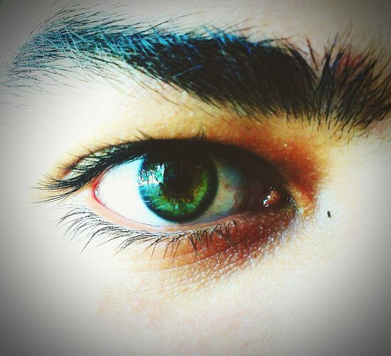 Eye4photography  IGreen Fresh And Clean Artlover