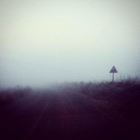 ❄Carretera Ruta Niebla Silent Hill Terror frioHelada Hielo Invierno Enero 2° Temperatura Beneixama SPAIN Nice Cute Estaciones 🌊❄️