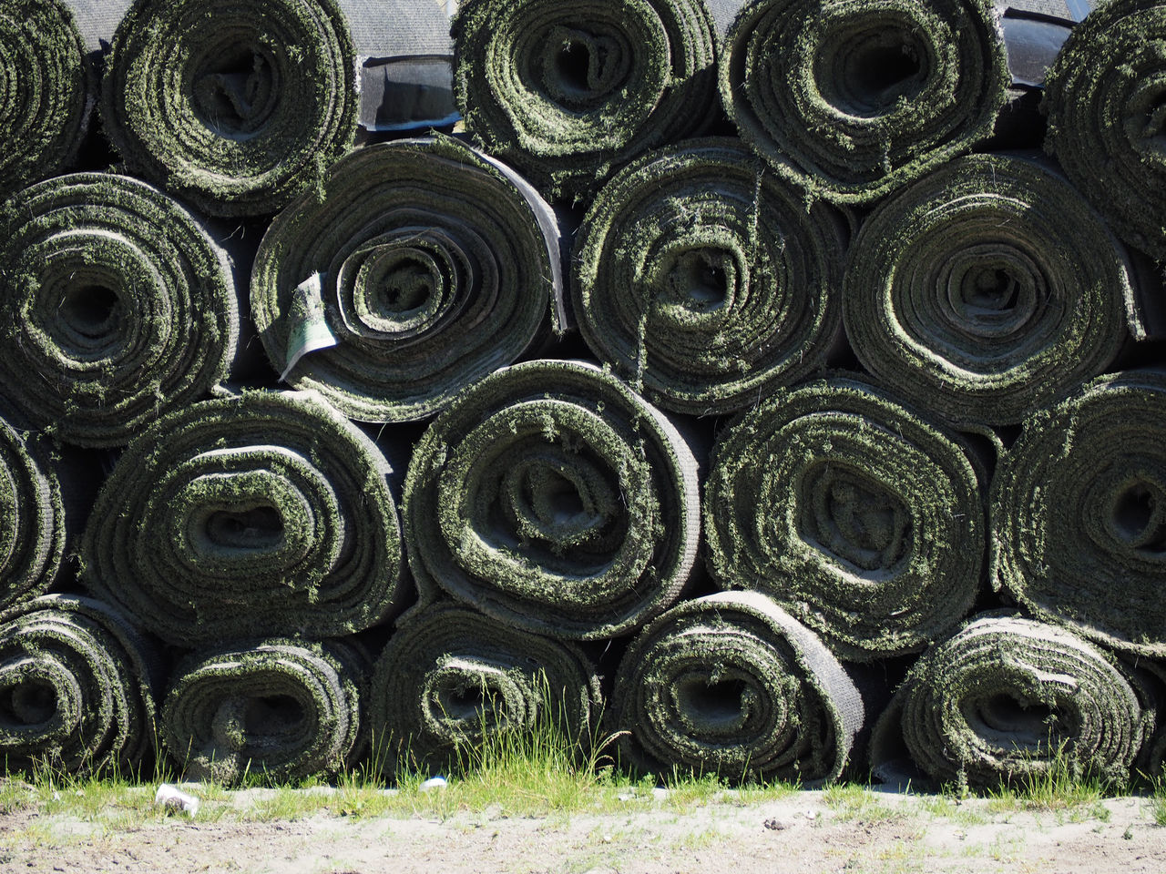 Rolled Up Turf On Field