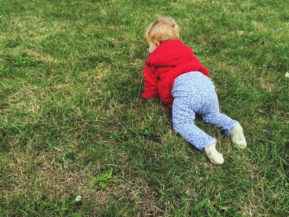 Child Children Only Childhood Grass Blond Hair Full Length Red One Person People Rear View Green Color Outdoors Nature Day