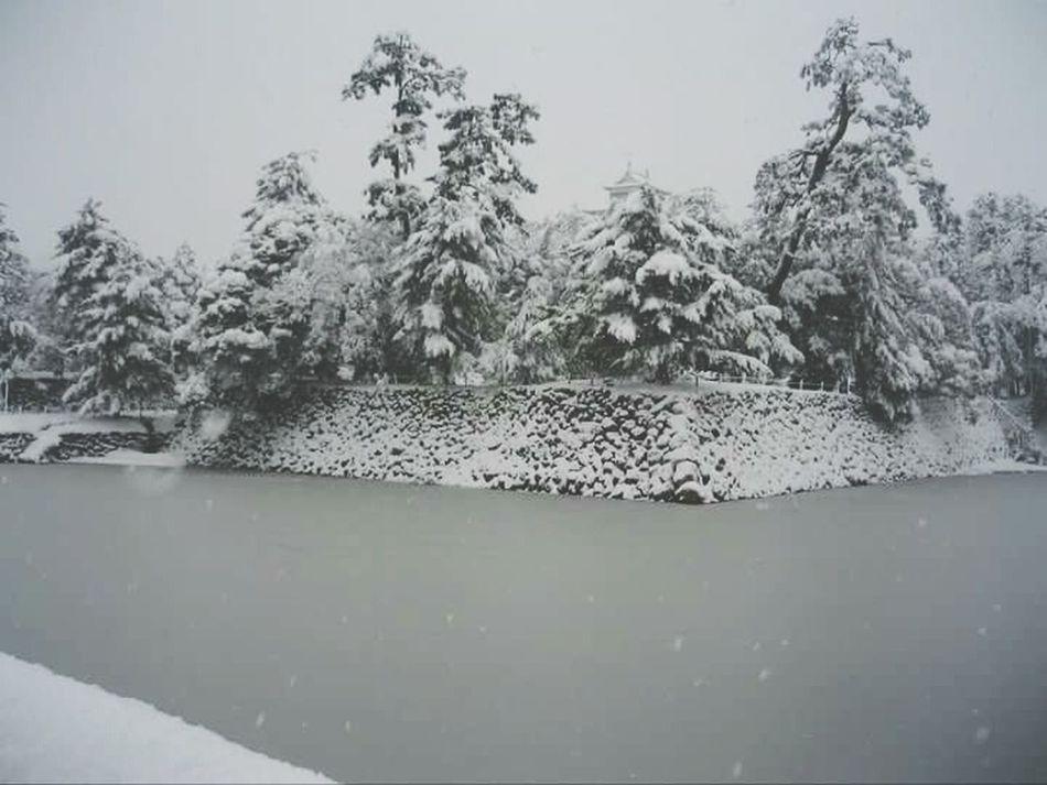 Snow ❄ Matsuejo