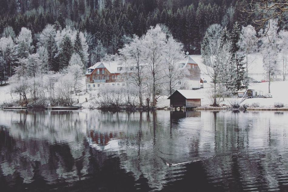 Winterwonderland Wintertime Connected With Nature Sound Of Silence What Does Peace Look Like To You?