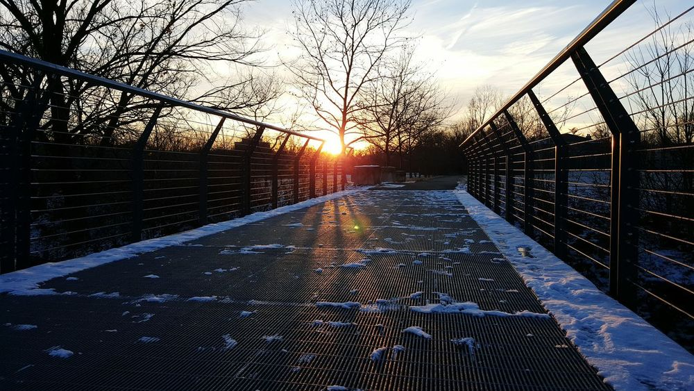 Sky Sunset Outdoors Nature Winter Kentucky  Steel Bridge Winter Sunset Light Snow Landscape Steel Cables Converging Lines Bare Trees Cold Temperature Park Evening Light Urban Nature
