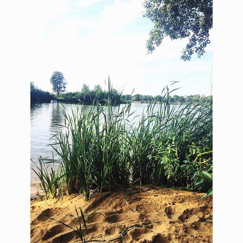 Lake Sand Niceweather Baggersee