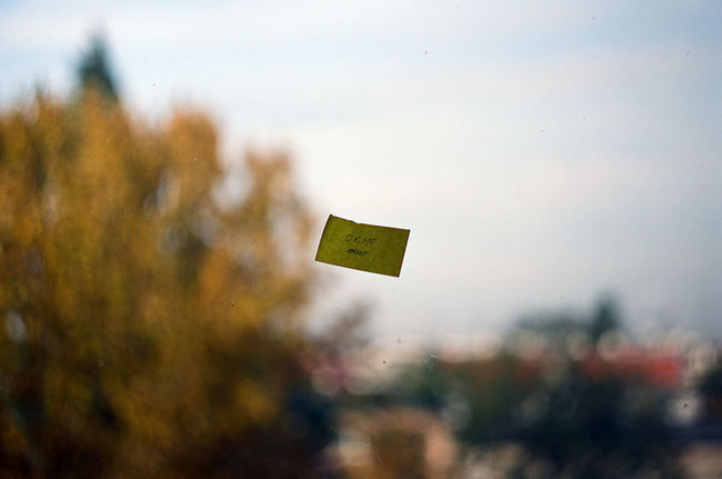 Analogue Photography Glass Poor Focus Post-It Note Russian Trees Window Yellow