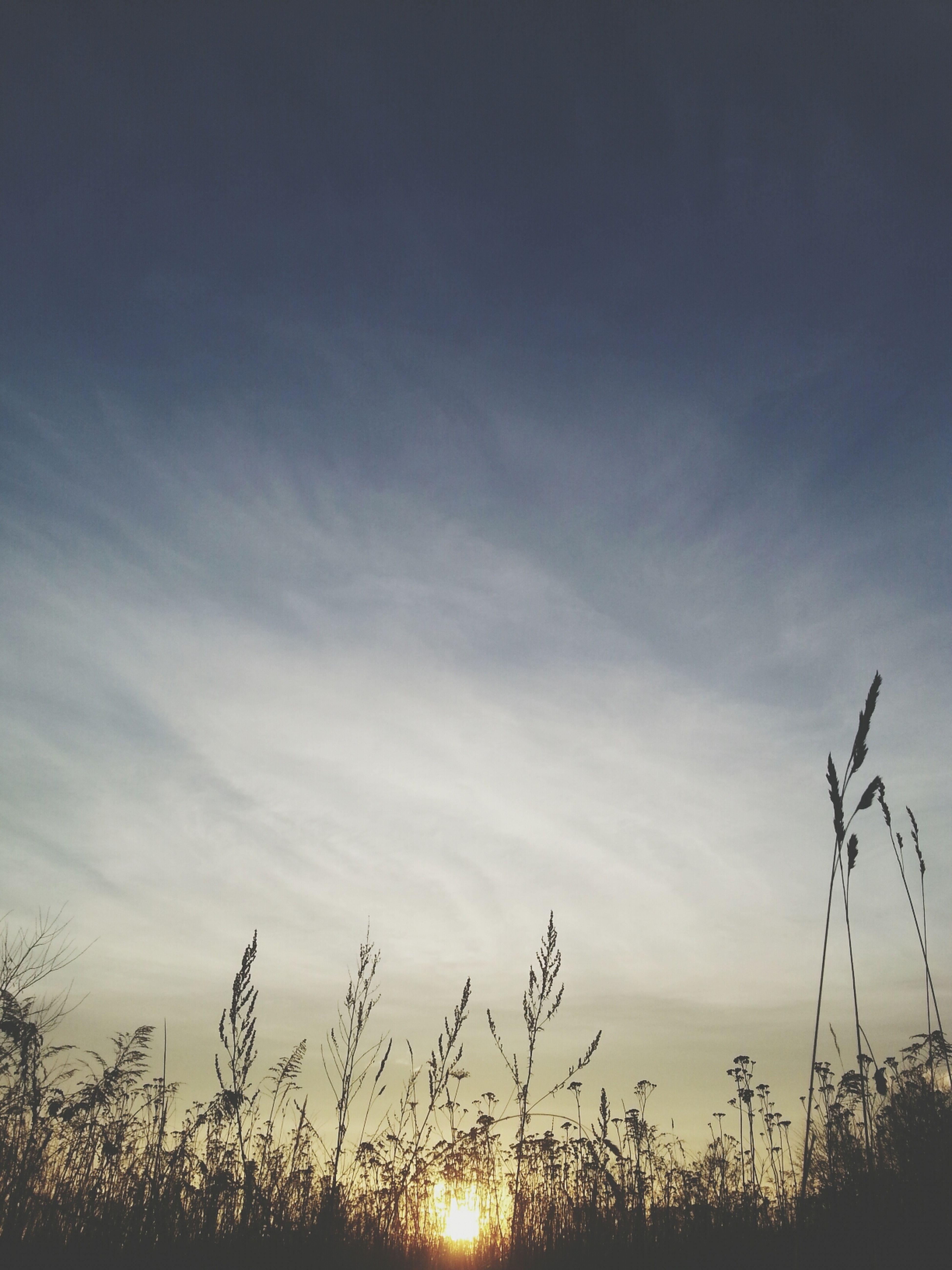 the sun dont shine whitout you ♧ Relaxing Hello World Sun Good Morning Sunshine perfect