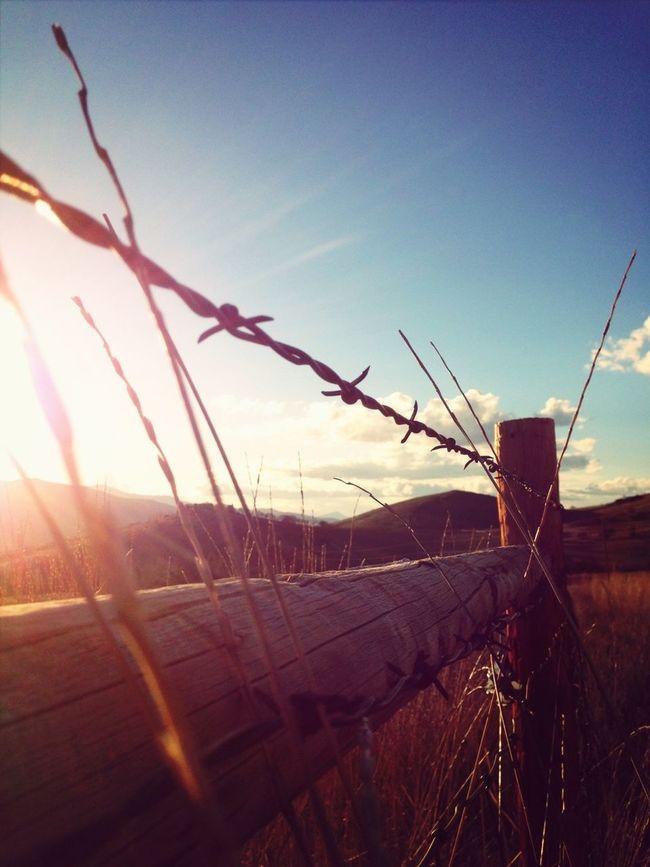 Fence Longboarding EyeEm Nature Lover EyeEm Best Shots
