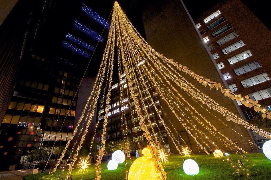 Christmas tree? Tadda Community Night Photography Christmas Lights City Lights Illumination