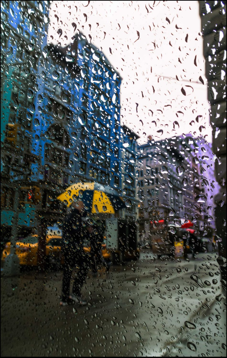 Water Drops #86 - 5/6/16 As I Sees It Brudder We've Had Our Share Of Rain Creative Selections & Adjustments W/ Ps CC2016 EyeEm Best Edits EyeEm StreetPhotography, NYC Rain Brings Growth & Opportunity For 📸 The Photojournalist – 2016 EyeEm Awards The Street Photographer - 2016 EyeEm Awards Fresh on Market May 2016