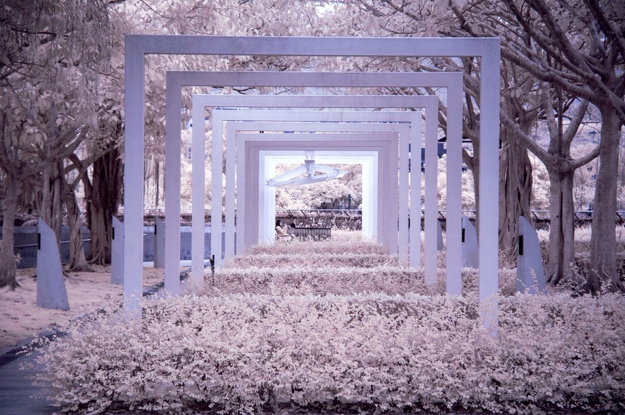 Beautiful stock photos of frame, Beauty In Nature, Built Structure, Cold Temperature, Day