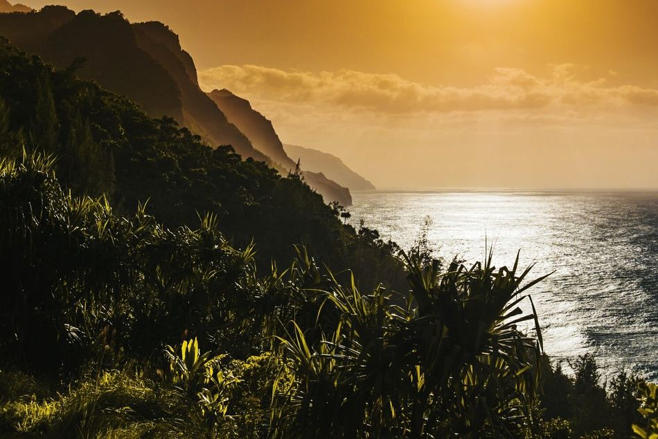Sunset Nature Landscape Travel Cave Beauty In Nature Sunbeam Scenics Sea Beauty Vacations Mountain Arrival Outdoors Water Milky Way No People KalalauTrail Lifeisbeautiful Kauai Hawaii Palm Tree Cloud - Sky Beauty In Nature Hawaii Sky