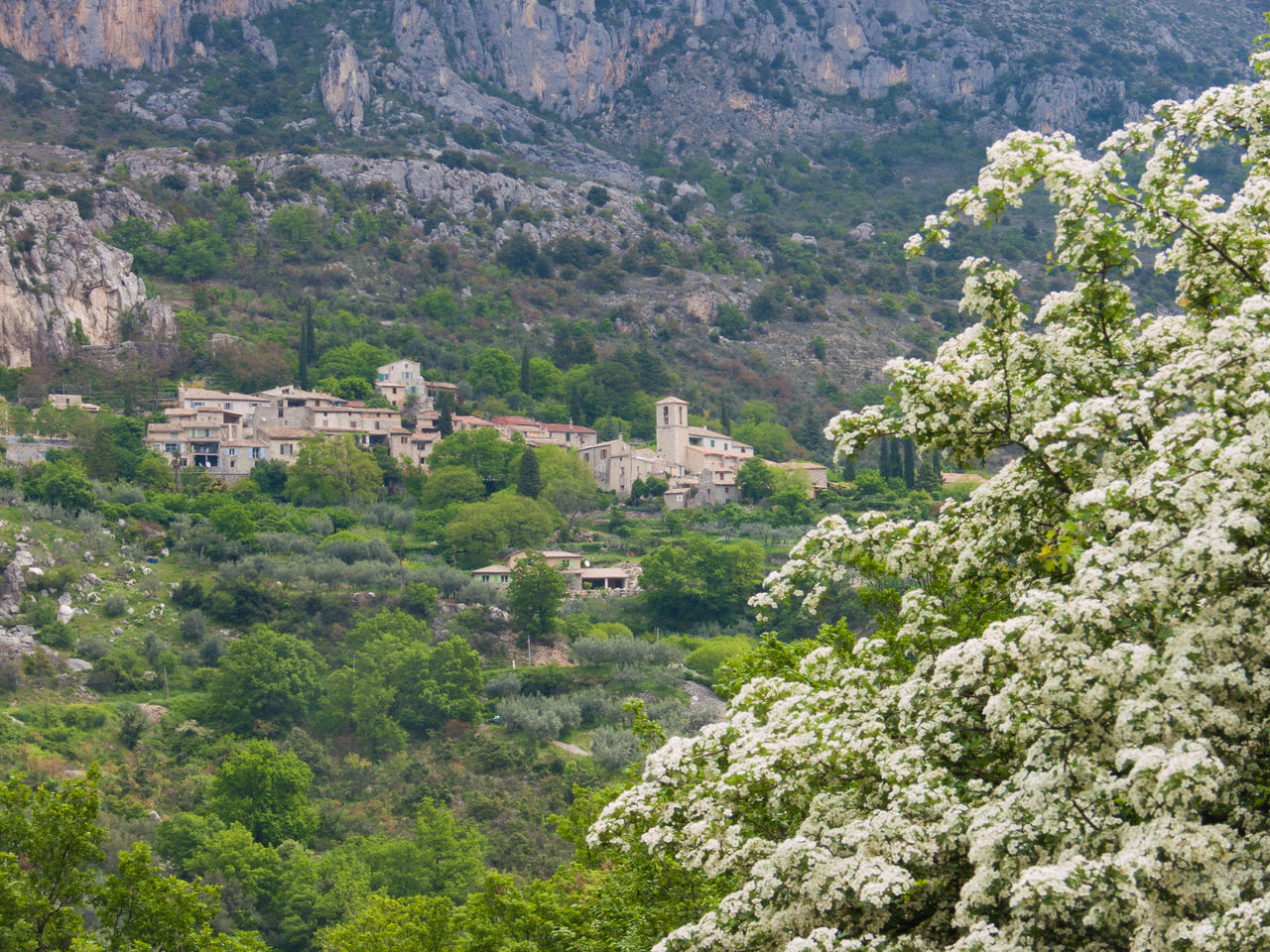 ,buis les baronnies,drome,france Aerial View Ancient Ancient Civilization Architecture Beauty In Nature Building Exterior Built Structure Cliff Day Growth High Angle View History Landscape Mountain Nature No People Outdoors Plant Quarry Rural Scene Scenics Travel Tree