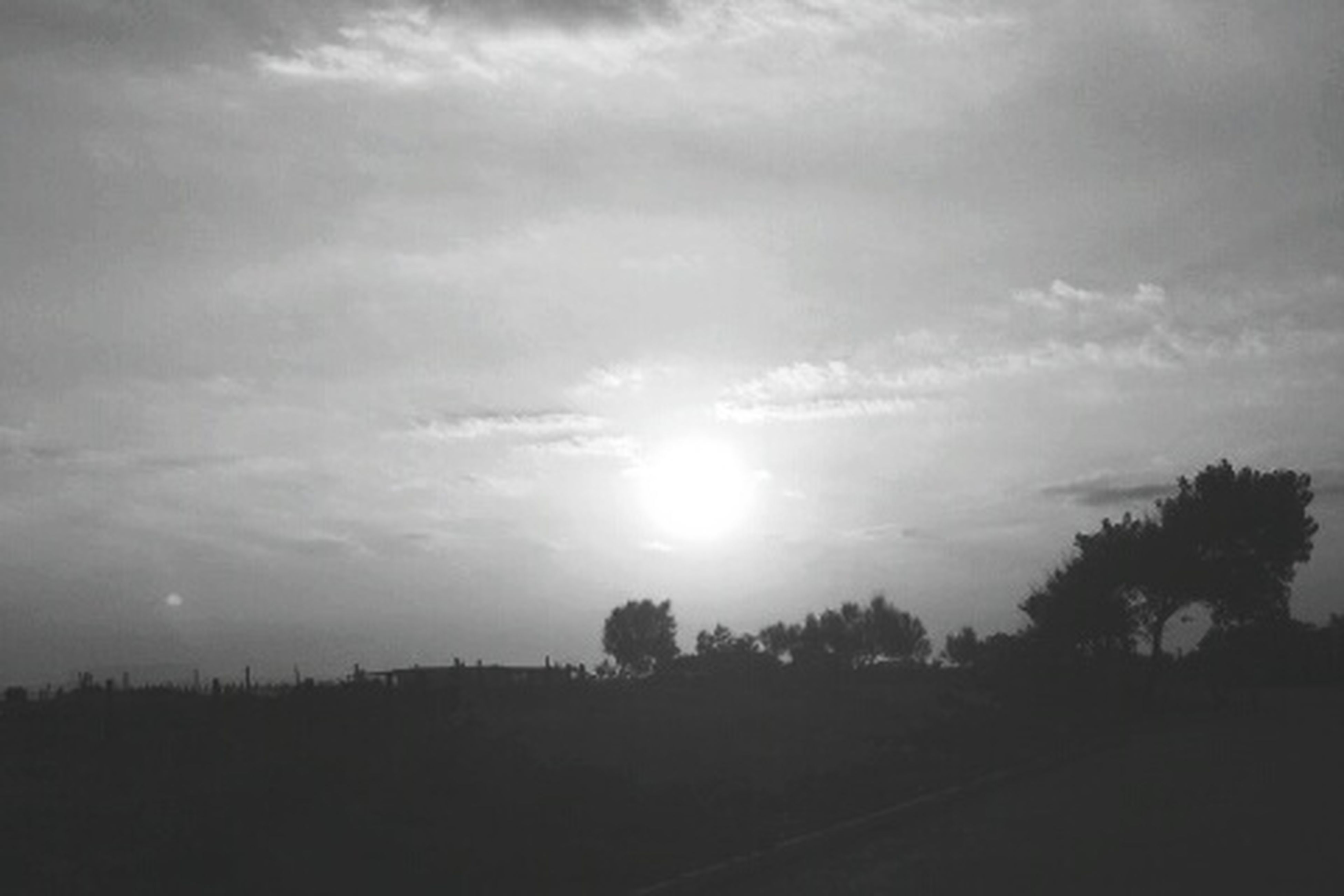 sky, tranquil scene, tranquility, sun, silhouette, scenics, beauty in nature, cloud - sky, landscape, tree, nature, sunbeam, sunlight, field, sunset, cloudy, cloud, idyllic, lens flare, outdoors