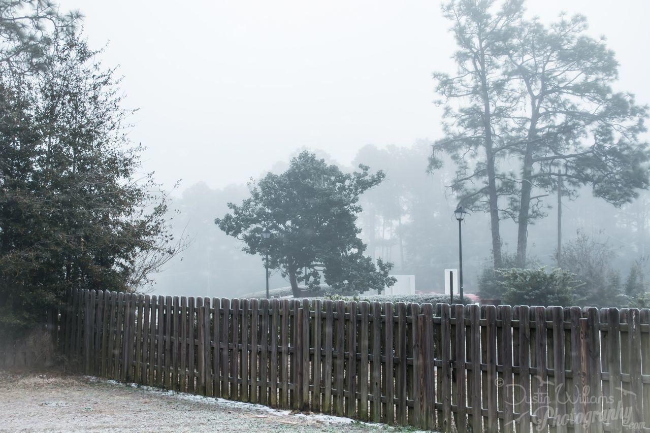 Good Morning everyone! Morning Frost Fog