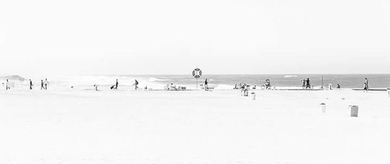 Summer Beach Beachphotography Blackandwhite Black & White Verano People Verano !  Eyemphotography Eyem Best Shot EyeEmBestPics Eyeemblack & White Hot Day Snow Winter Animals In The Wild Cold Temperature Animal Wildlife Animal Bird Animal Themes Day Outdoors Frozen Colony