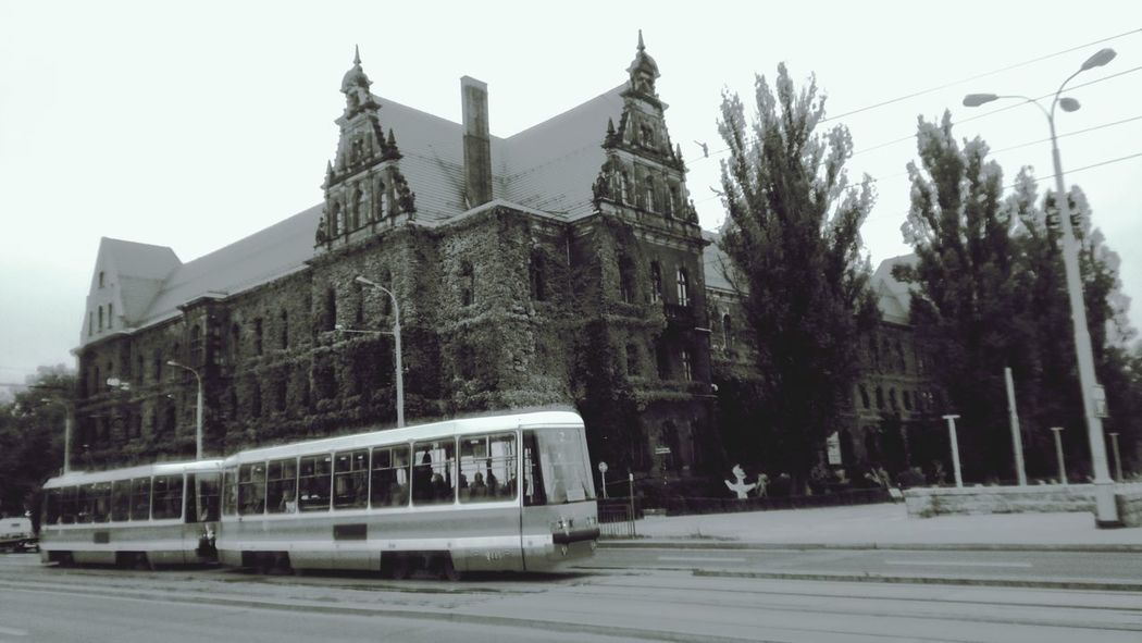 Wroclaw, Poland Wroclaw Tram Autumn Wind Architecture Museum Odra Odra River City Walk Outdoors Leaves Walkers
