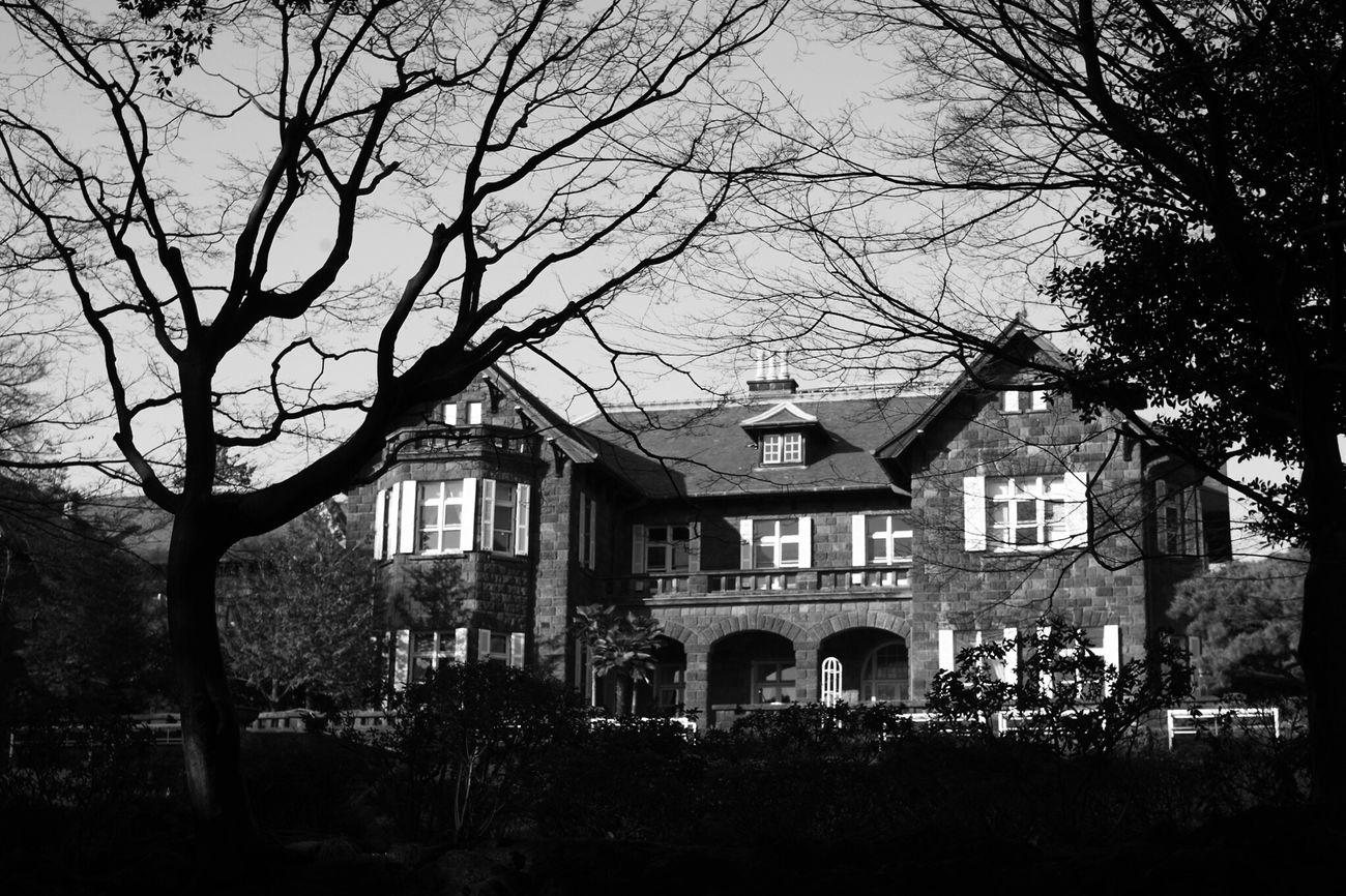 Black & White Blackandwhite Photography