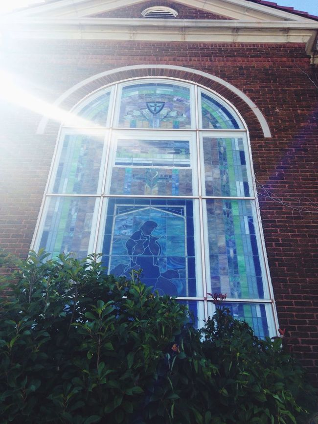 Window Stained Glass Window Stained Glass Plant Low Angle View Architecture Building Exterior Arch Sunbeam Day In Front Of Window Frame Flower Green Church Architecture Church