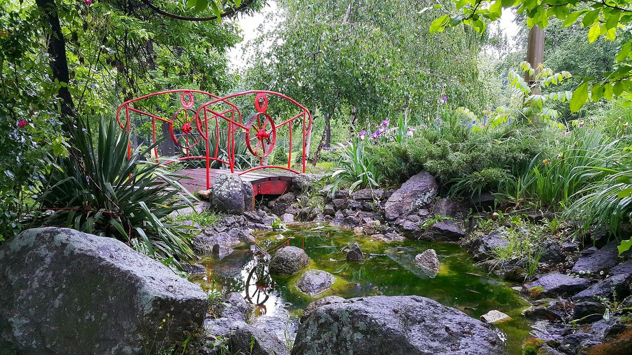 Park Bridge Colors Colorful Water Flowers Flowers,Plants & Garden Green Nature Red Kragujevac Trees