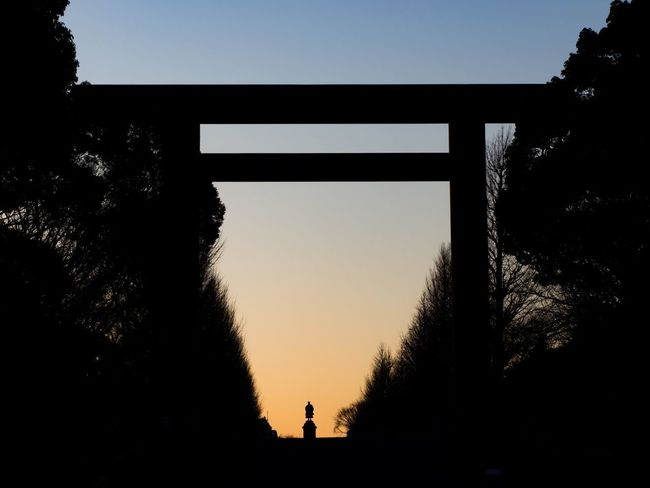Trees Tree Tokyo Silhouette Tree Sky Sunset Clear Sky Built Structure Nature Outdoors Architecture Real People Day Shades Of Winter EyeEmNewHere