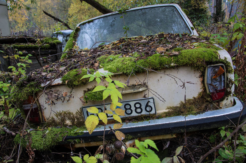 142 Car Growth Hat Old Outdoors Run-down Volvo Mein Automoment