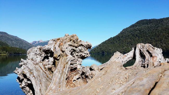 Patagonia Argentina Paisaje Enviroment Water Agua Lago Tronco Three Trunk