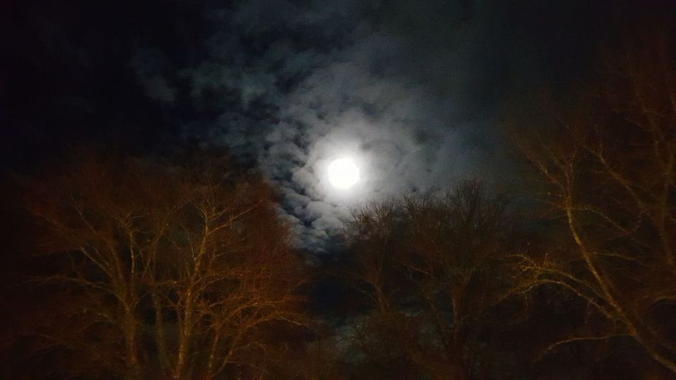 Oh moon of Ludvika 🌕 Nature Moon Night No People Tranquility Sweden Dalarna Ludvika Low Angle View Clouds Evening Fullmoon Outdoors Beauty In Nature Sky