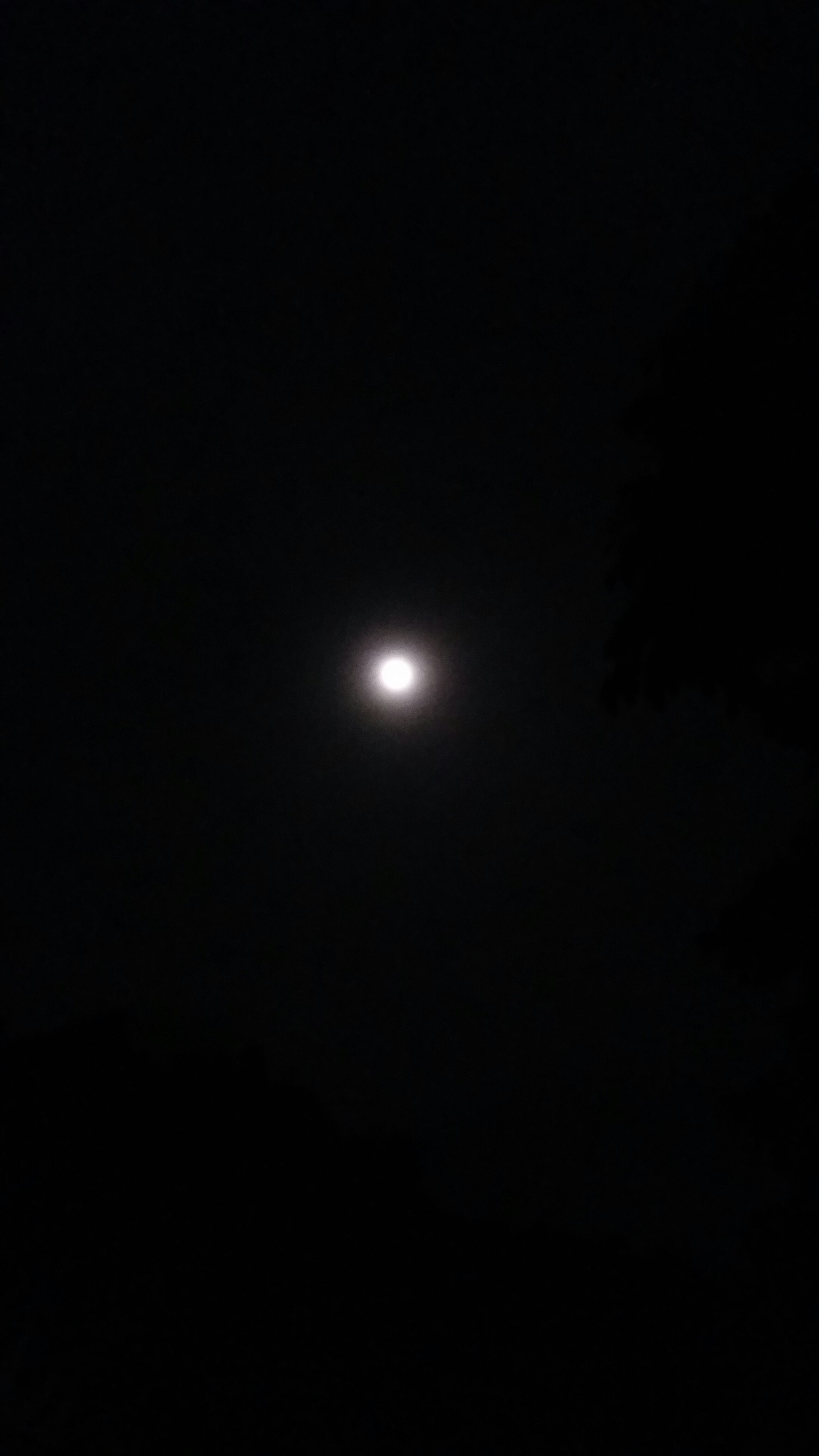 moon, night, astronomy, beauty in nature, scenics, copy space, tranquility, full moon, low angle view, tranquil scene, dark, nature, clear sky, sky, planetary moon, idyllic, moonlight, majestic, space, space exploration