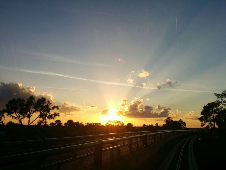 Dawn Breaking Dawn Sunrise 🌅 Trees Trees And Sky Tracks Train Tracks Airport Orlando Florida