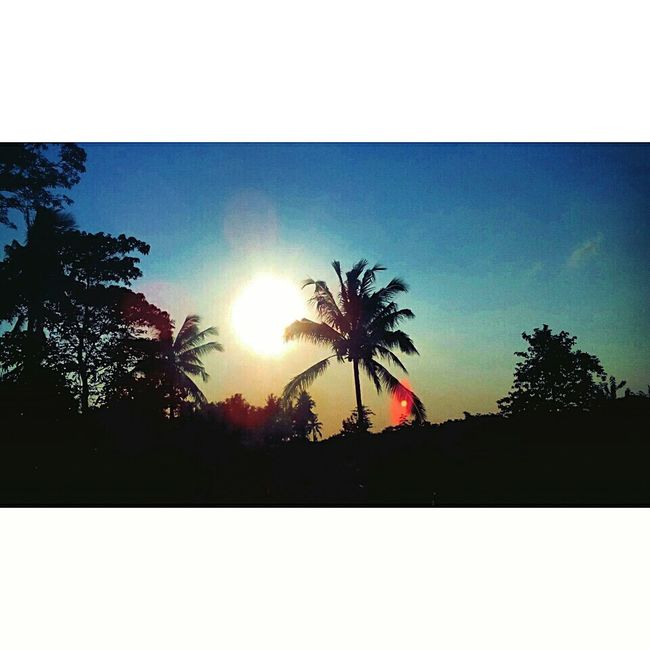 Afternoon Sun ☀ Sun_collection Sun Skylovers First Eyeem Photo