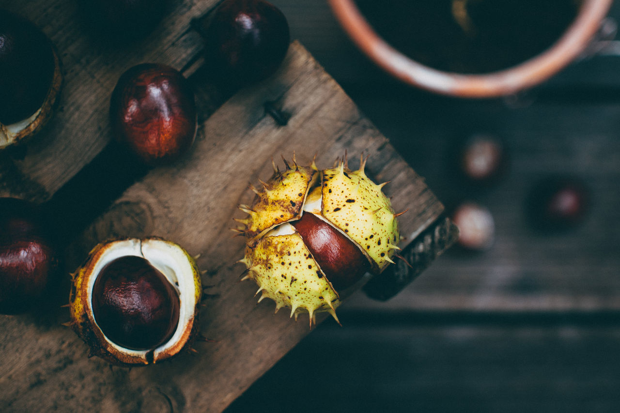 Beautiful stock photos of food, Chestnut - Food, Day, Focus On Foreground, Food