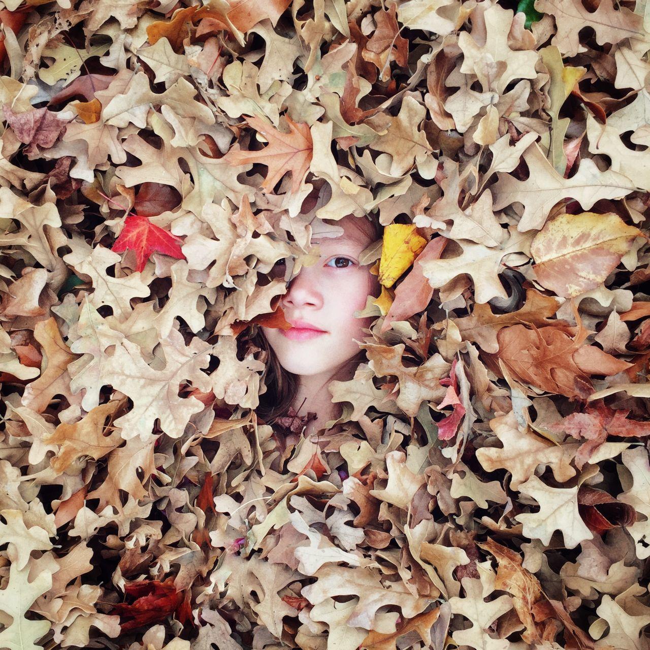 Beautiful stock photos of kids, 10-11 Years, Abundance, Autumn, Caucasian Ethnicity