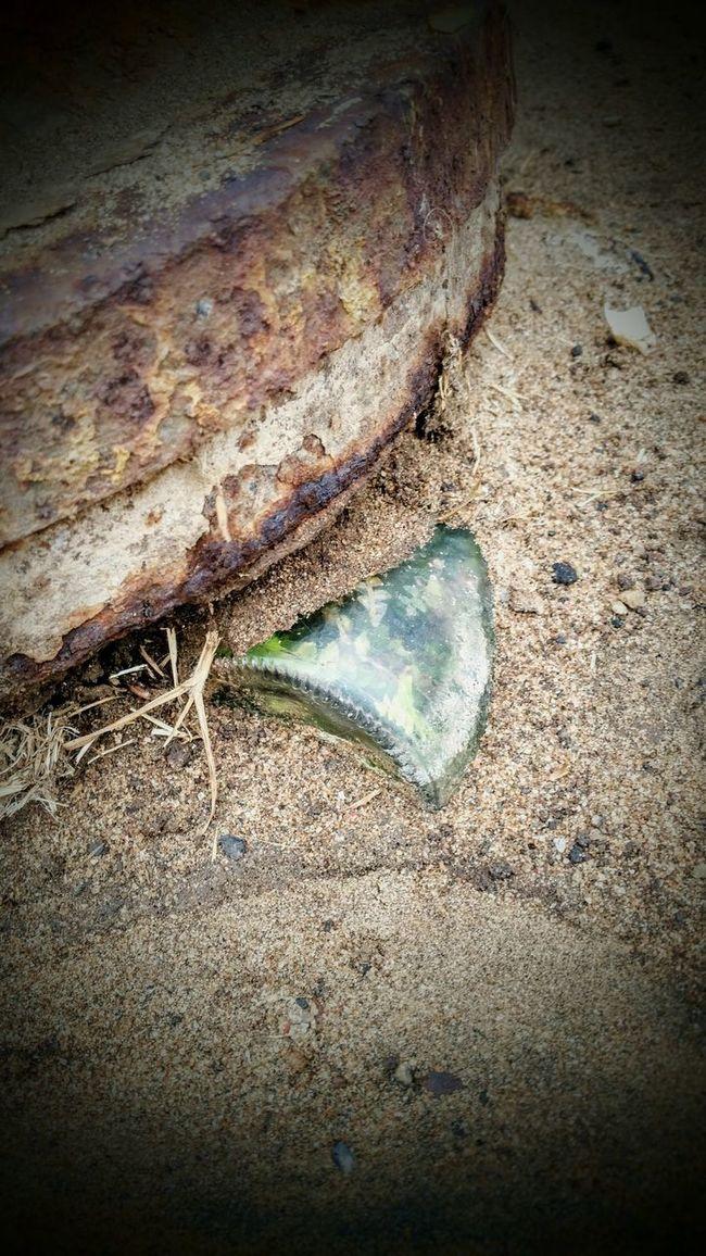 Hidden Treasure Buried In Sand Mobilephotography Eyeemphotography Beach Life Streetphotography
