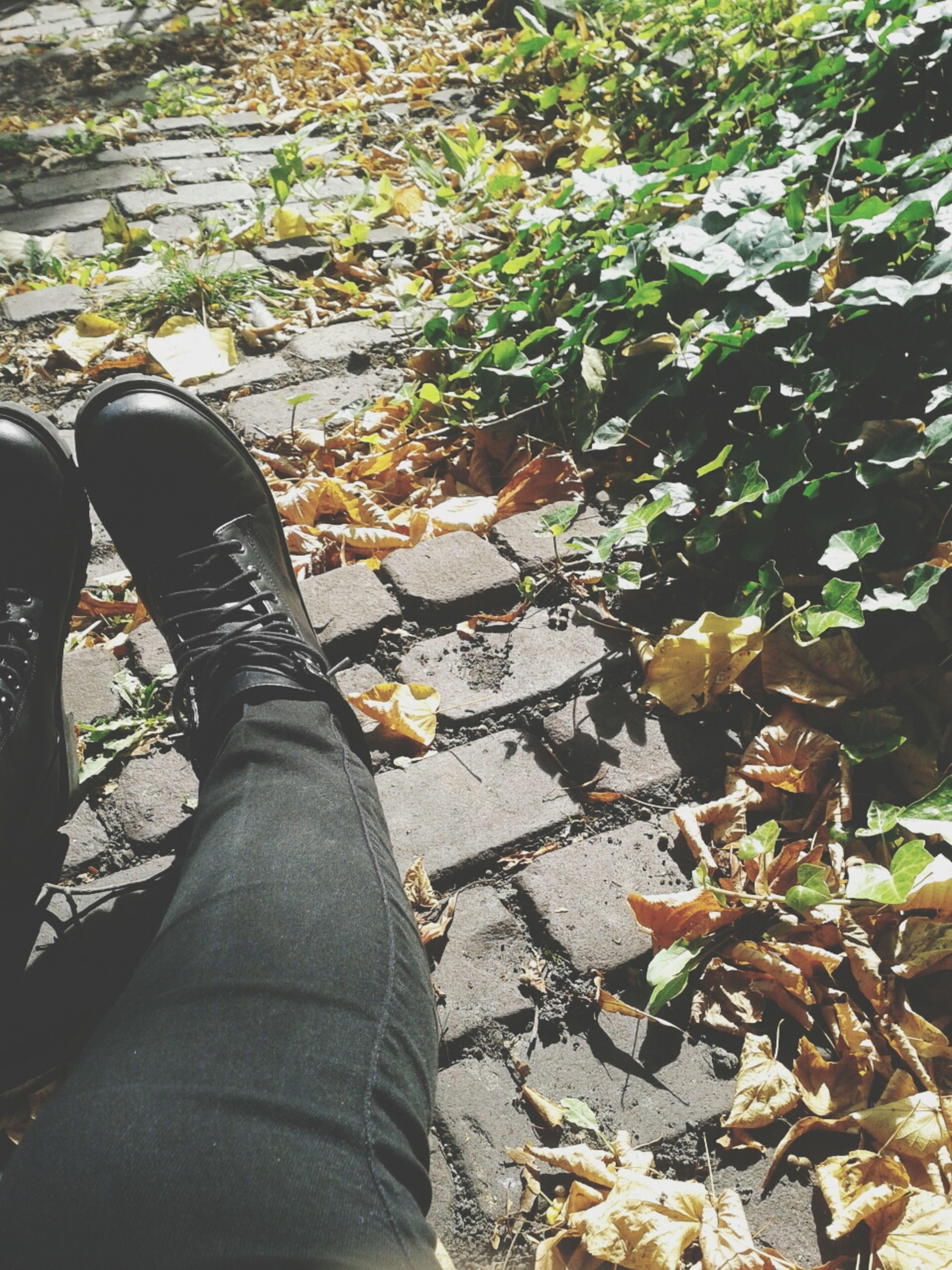Fall in town ♥